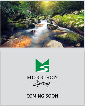 Morrison Spring