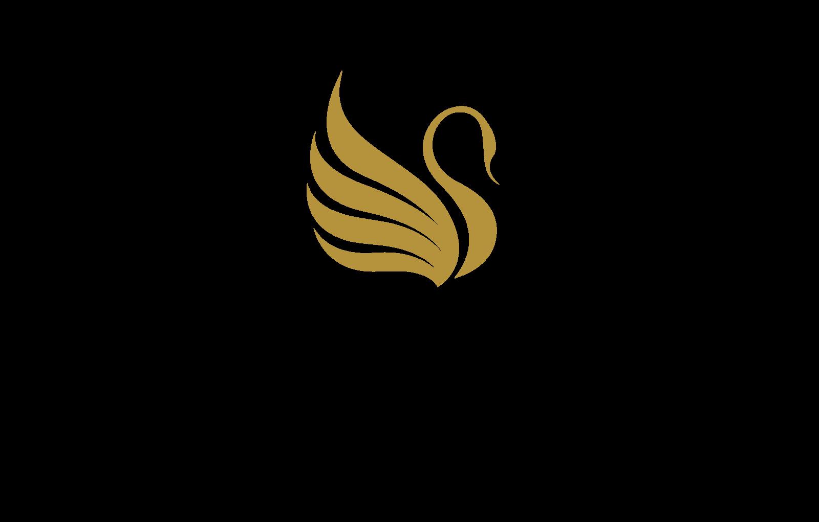 24705_DIG_COR_Website_Logo1