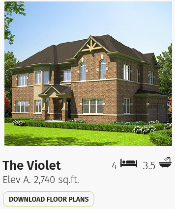 26749 DIG STO Violet