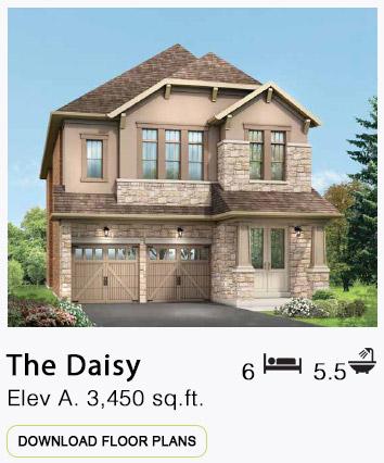 The Daisy Elevation A Floor Plans